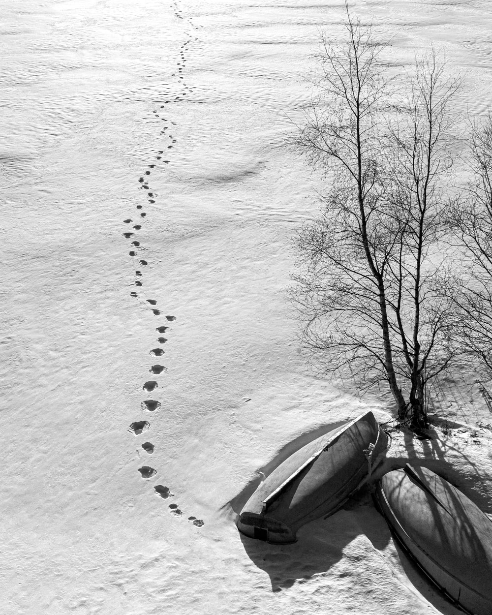 grayscale photo of car on snow covered ground