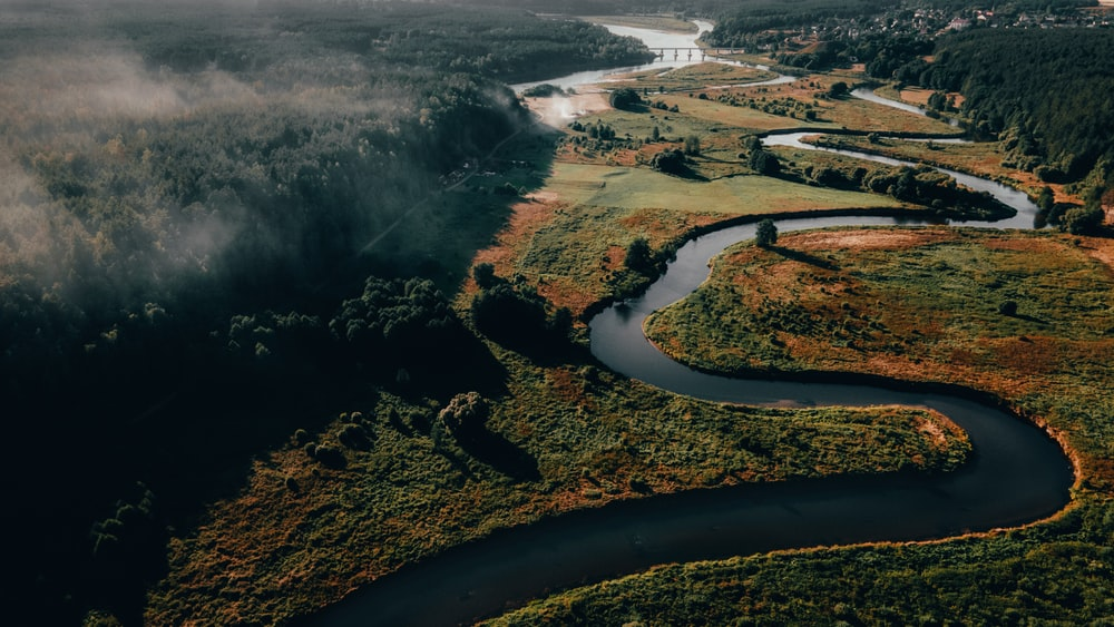 aerial view of river between trees during daytime