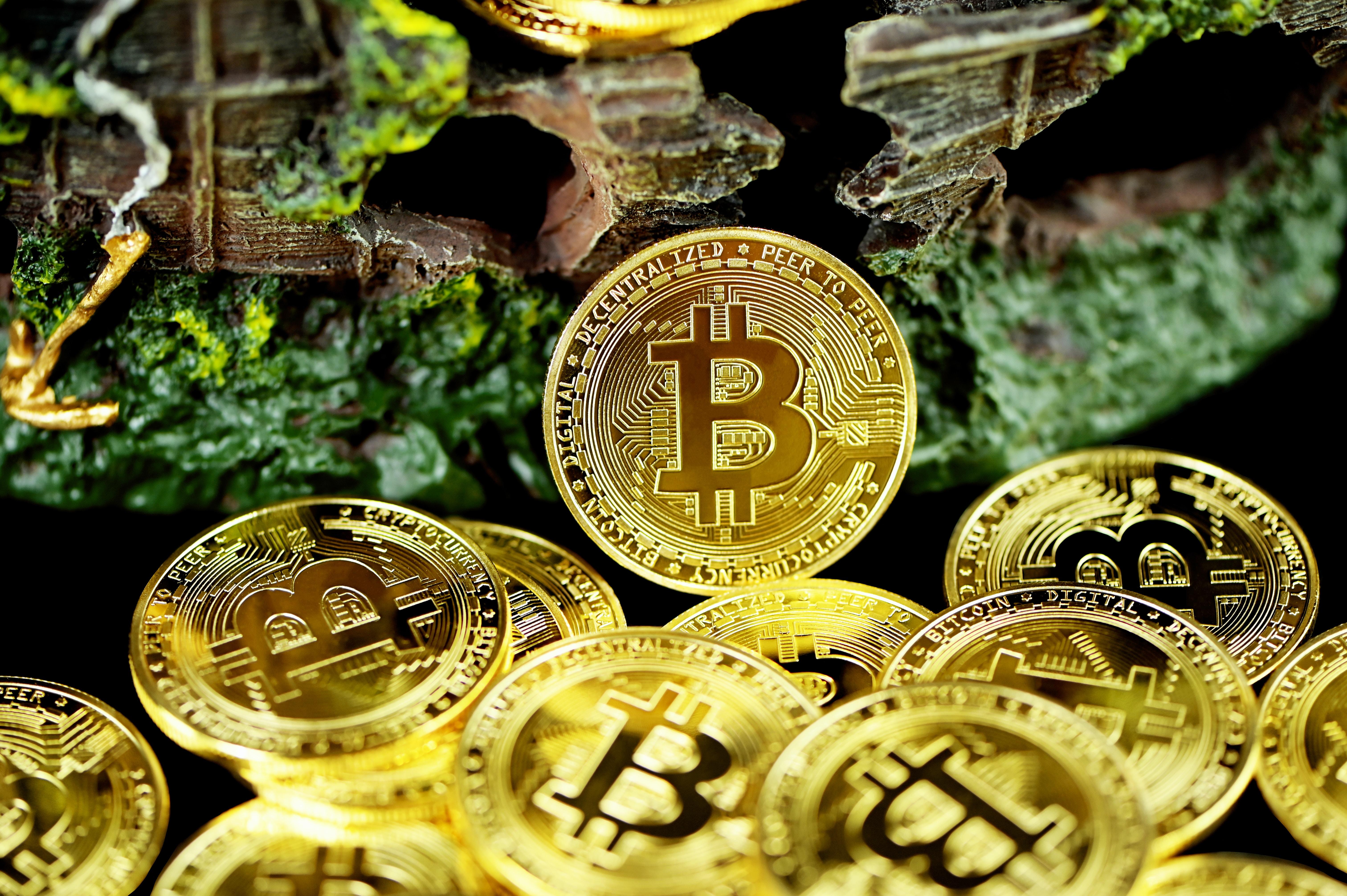 My Crypto Adventures