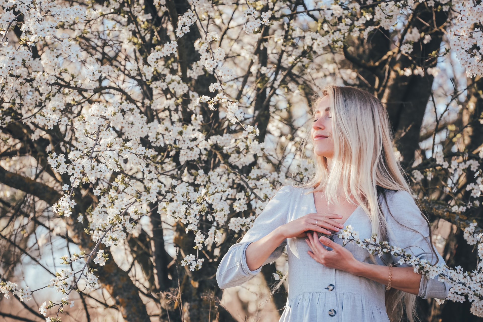 woman in white dress standing under white cherry blossom tree during daytime