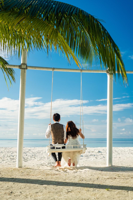 couple sitting on hammock under coconut tree during daytime