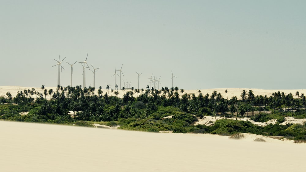gray scale photo of wind turbines on white sand