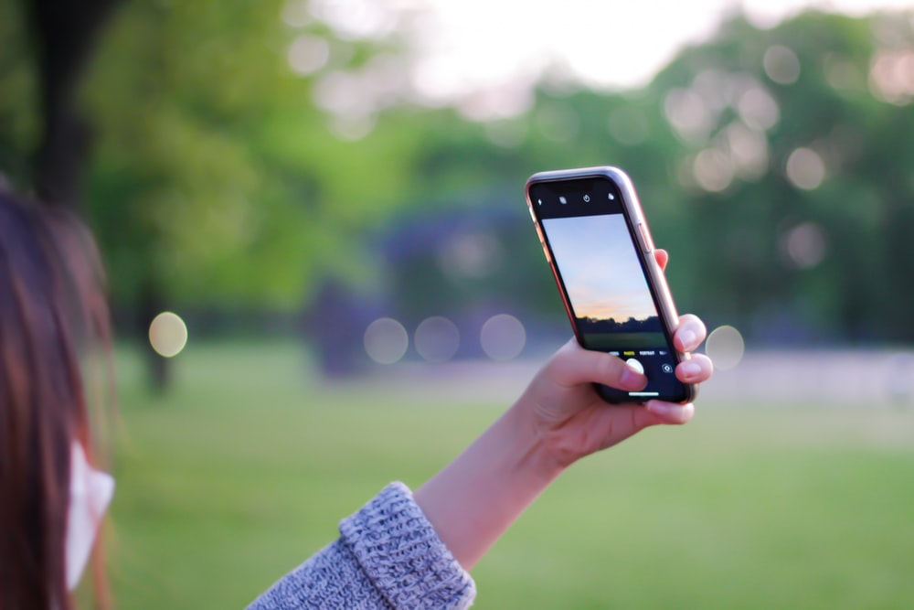 person holding iphone 6 taking photo of green trees during daytime