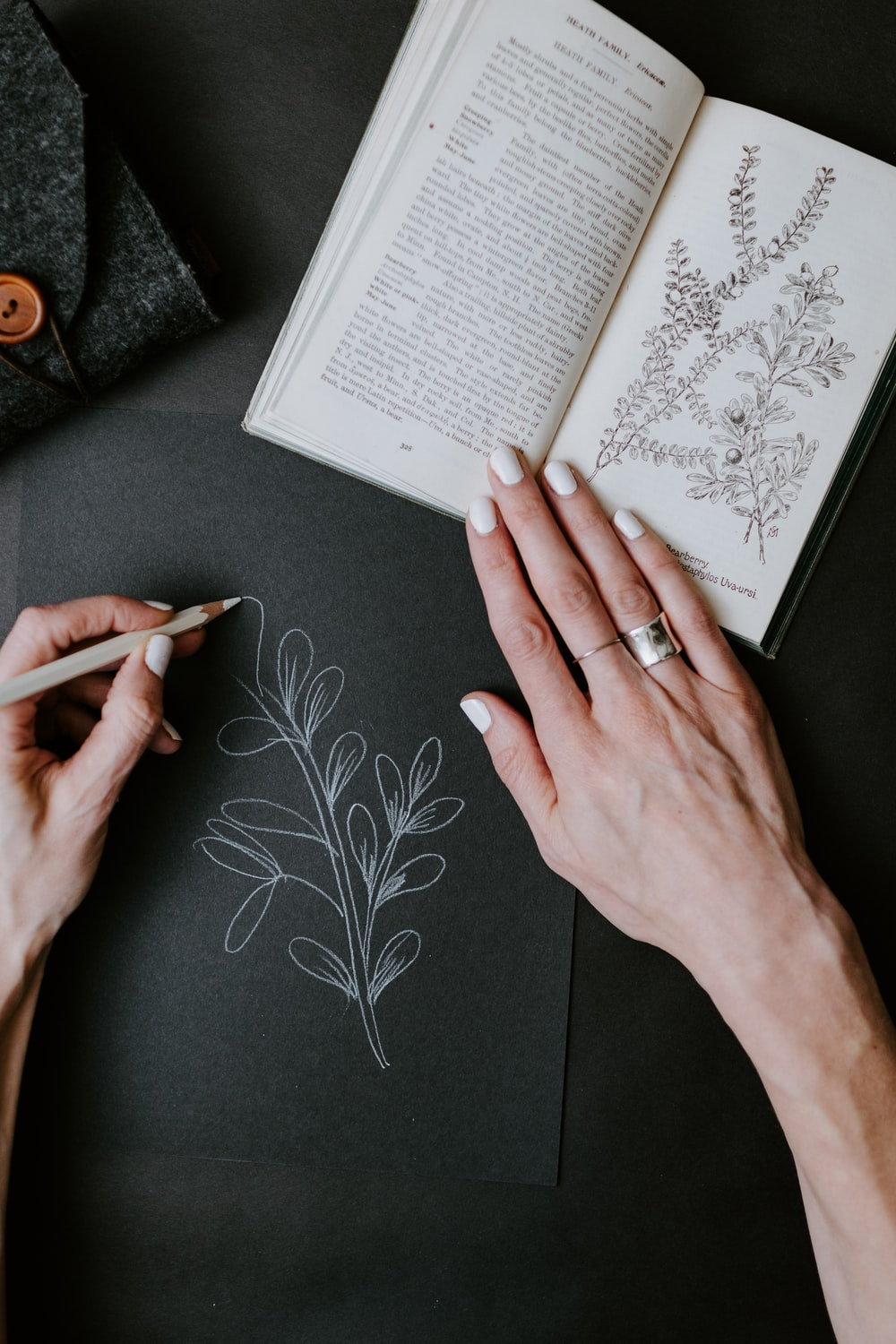 person wearing silver ring holding book
