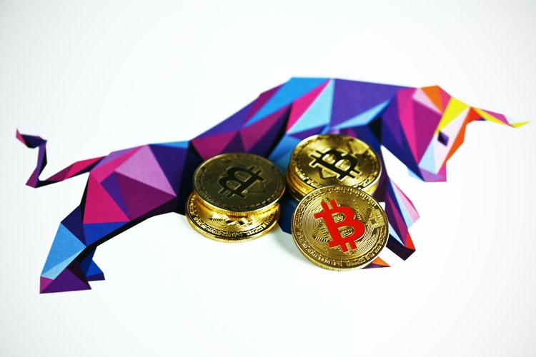 Can crypto bulls and meme tokens relieve India's COVID-19 pandemic