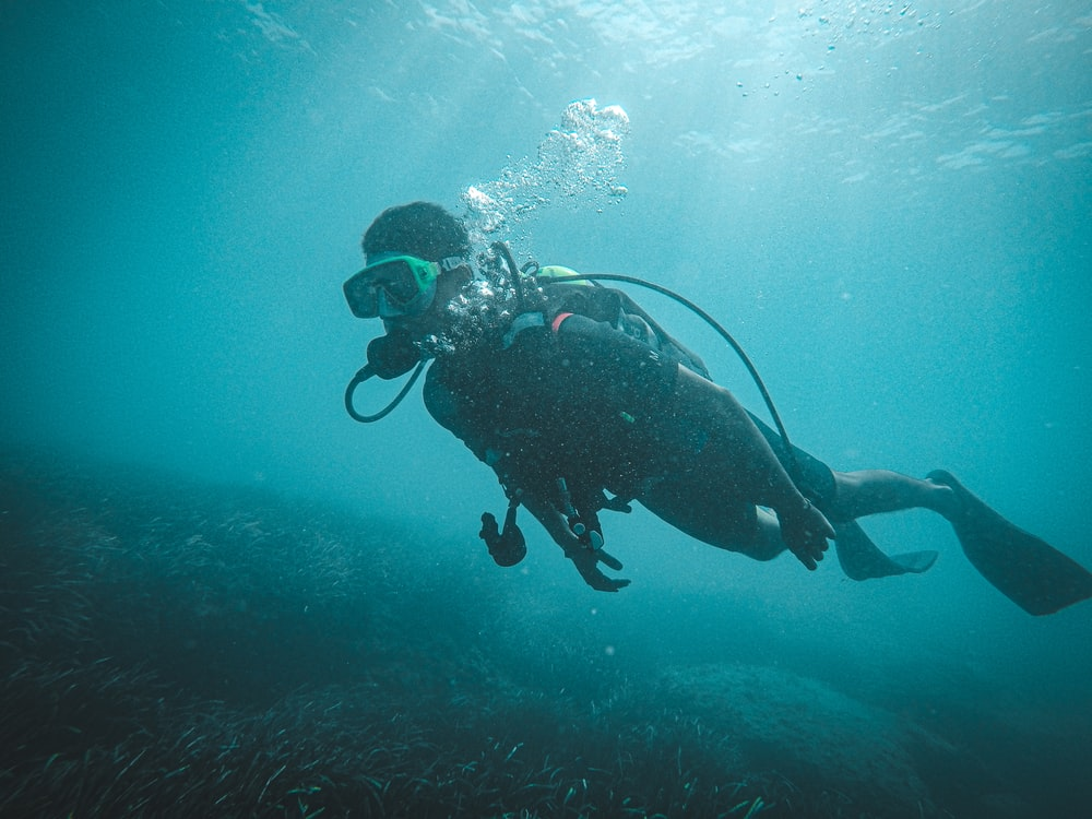 man in black and white diving suit under water