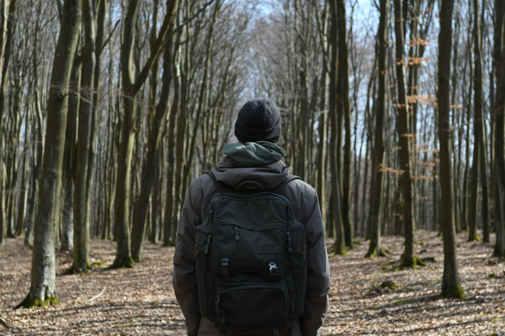 person in black hoodie standing in the woods during daytime