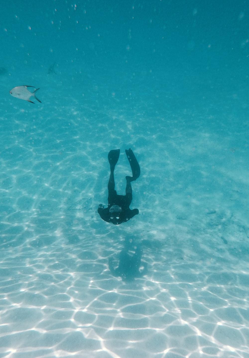 person in black wet suit in water