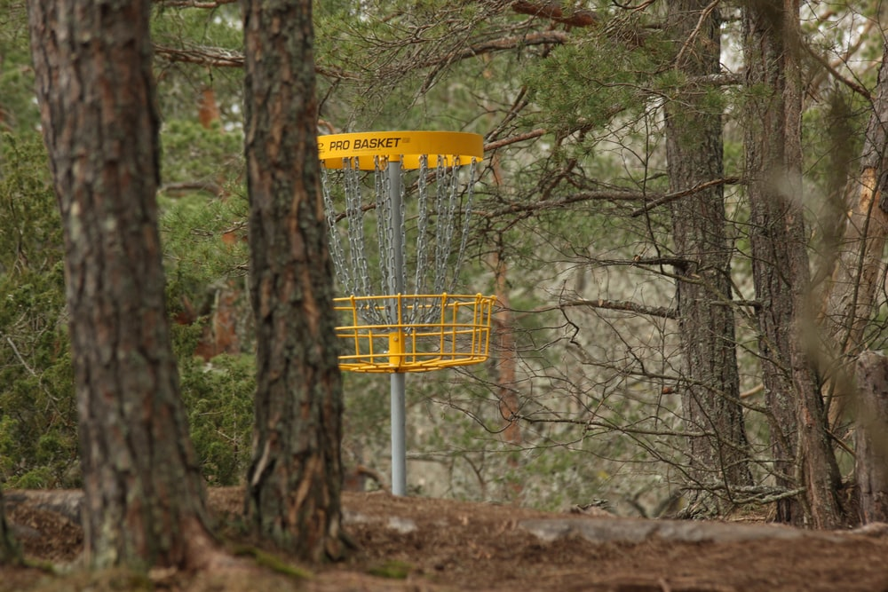 yellow and black metal signage near trees during daytime