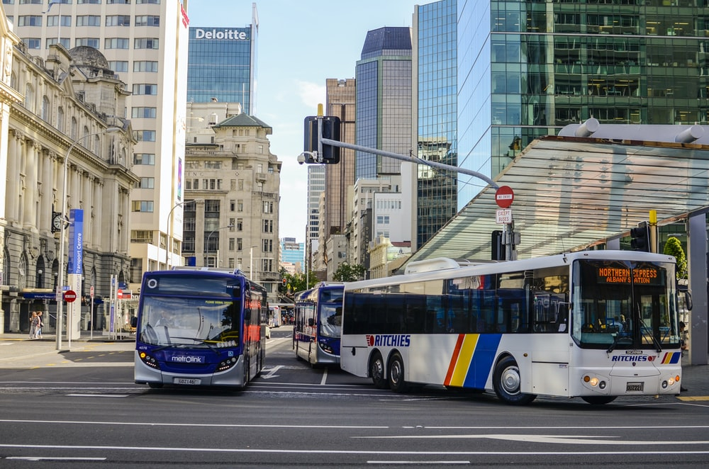 blue and white bus on road during daytime