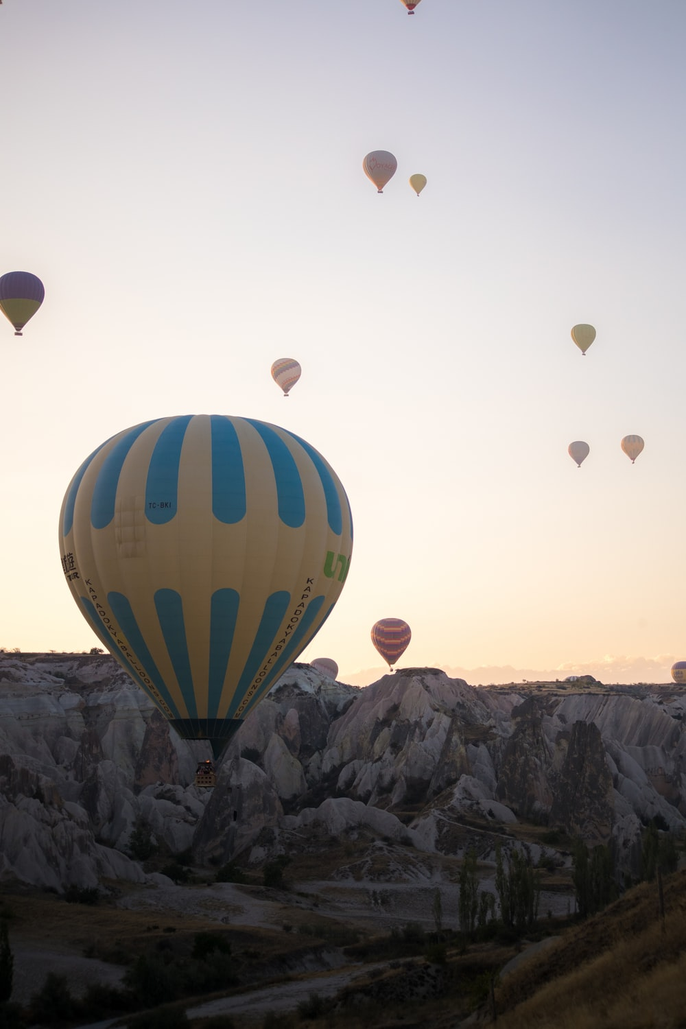 hot air balloons on the sky during daytime