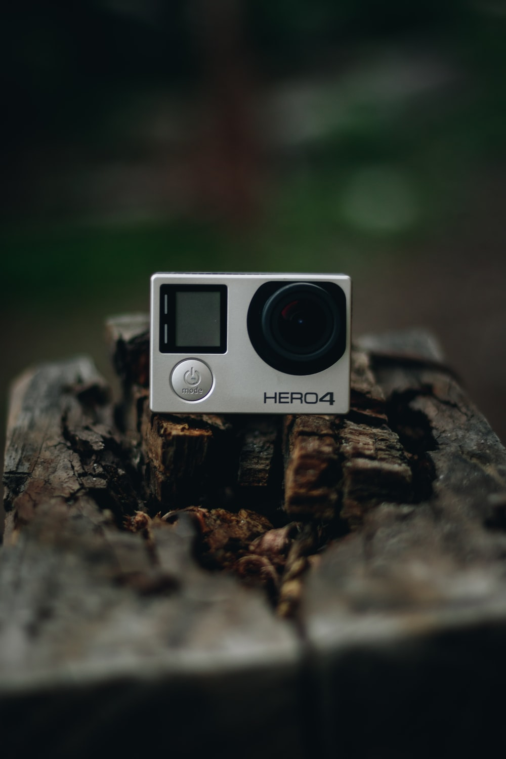 black and silver camera on brown tree log