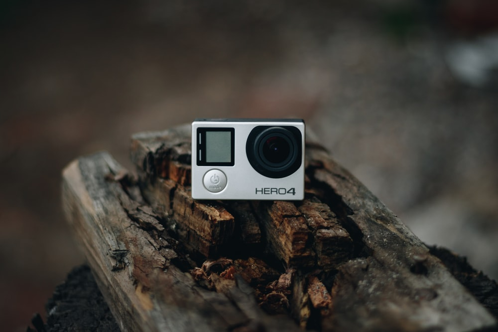 black and white camera on brown tree log