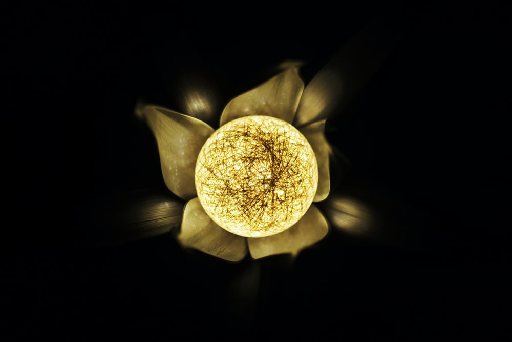 yellow and brown flower with black background