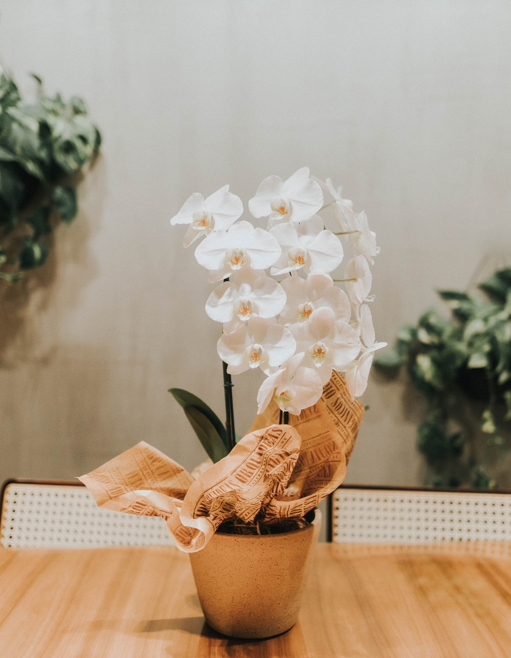 white flower bouquet on brown woven basket