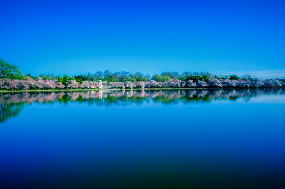 blue sky over lake during daytime
