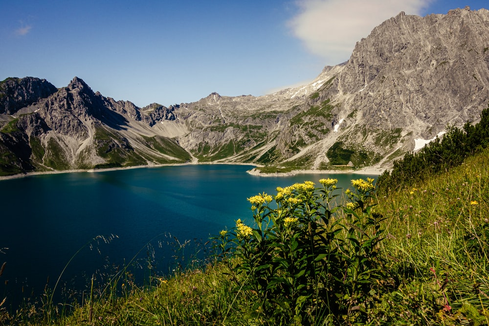 blue lake surrounded by green plants and gray mountains during daytime