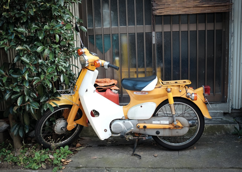 orange and white motor scooter parked beside green plants