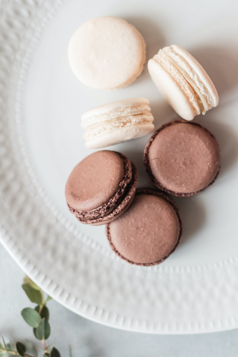 brown round cookies on white ceramic plate