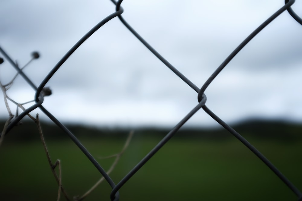 grey metal fence with green grass field in distance