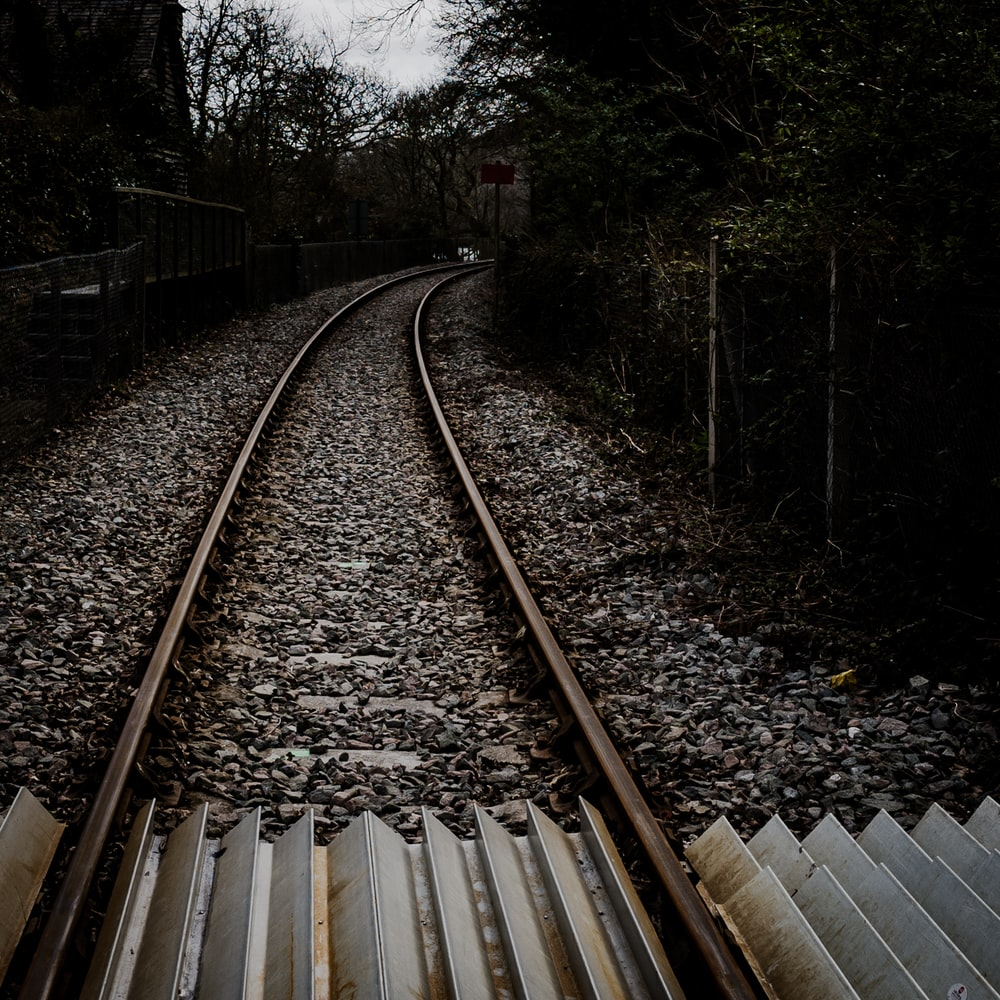brown wooden rail near bare trees during daytime