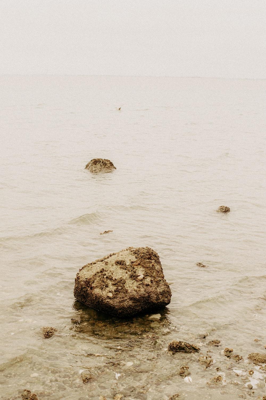 gray rock on white sand