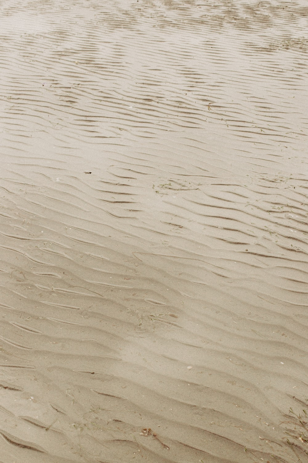 brown sand with water during daytime