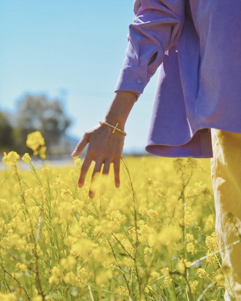 person in brown long sleeve shirt standing on yellow flower field during daytime