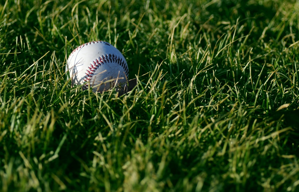 white baseball on green grass during daytime