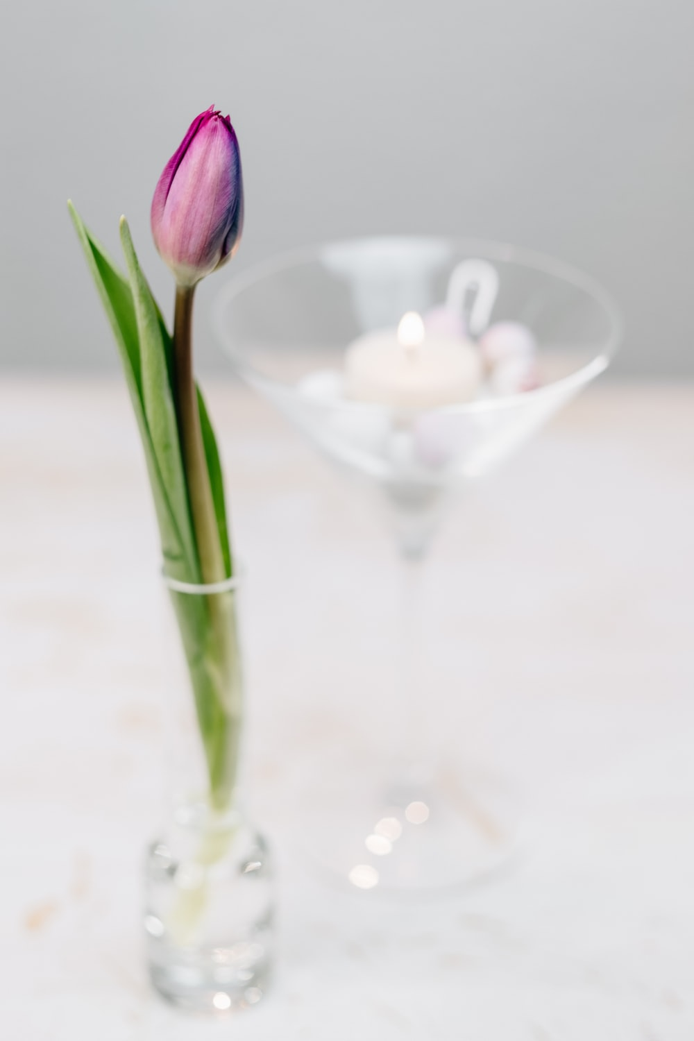 pink tulips on clear glass vase