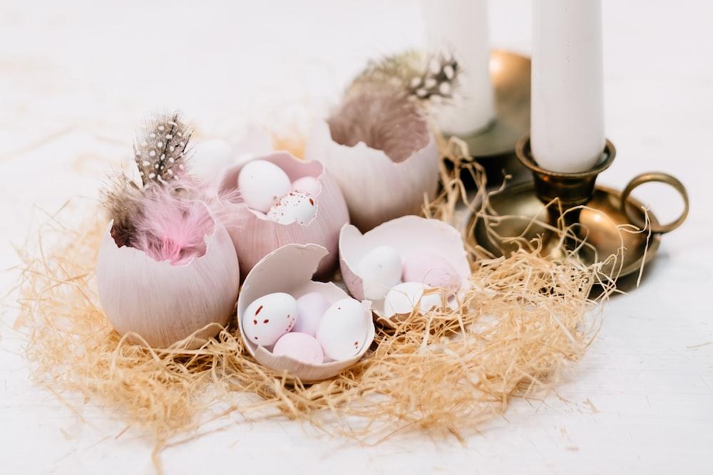 white eggs on brown nest