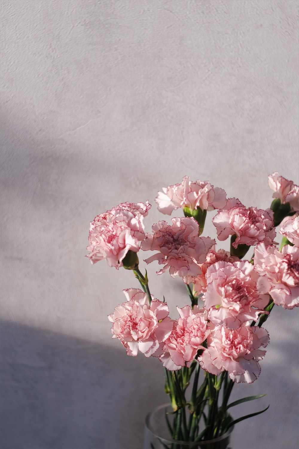 pink and white flowers on black table