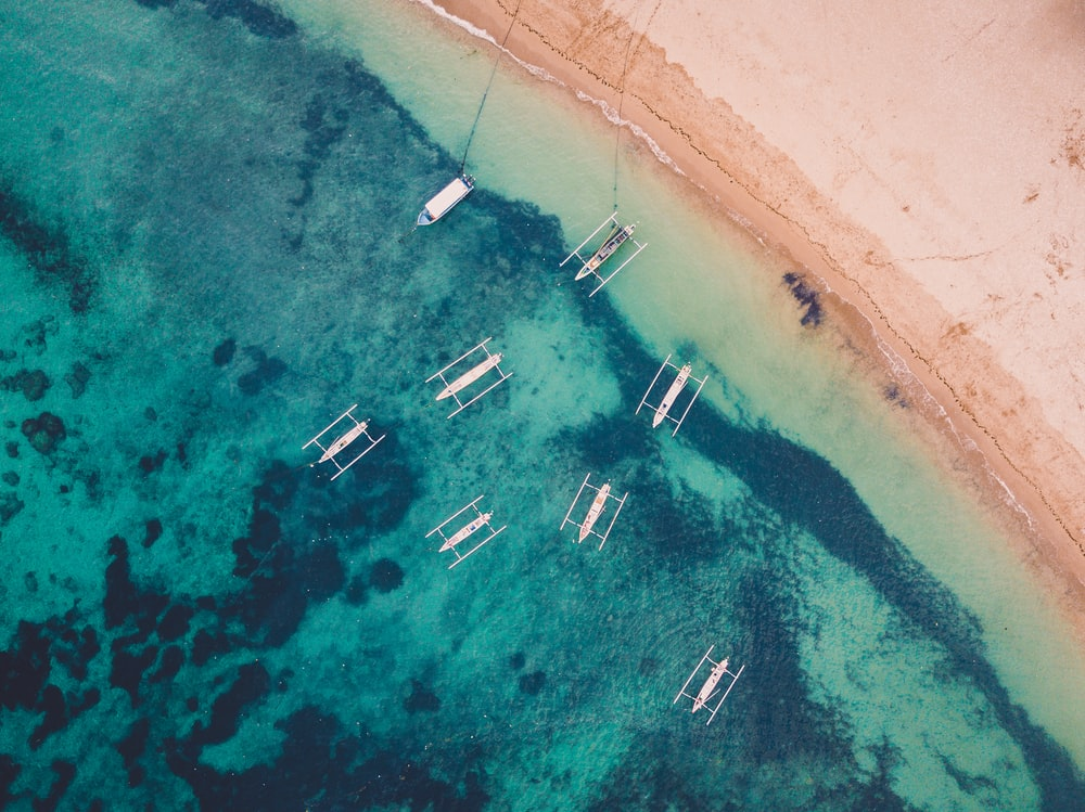 aerial view of boats on sea shore during daytime