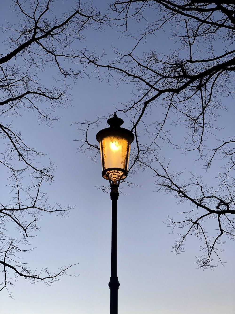 black street lamp near bare trees during daytime