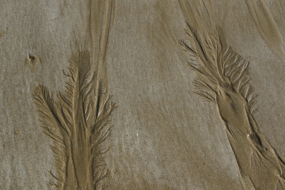 gray textile with brown stain