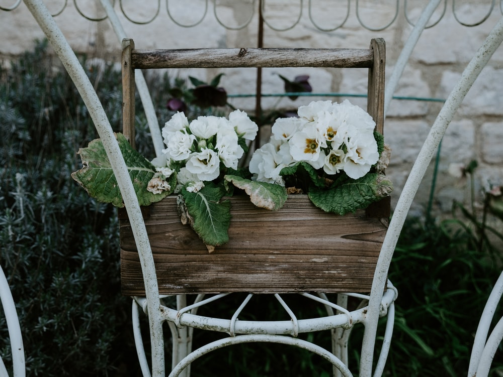 white flowers on brown wooden swing