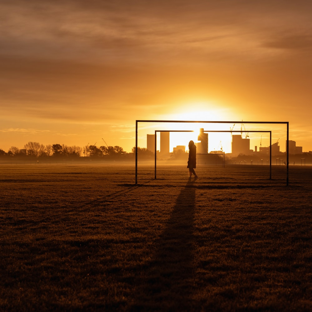 silhouette of person standing on field during sunset