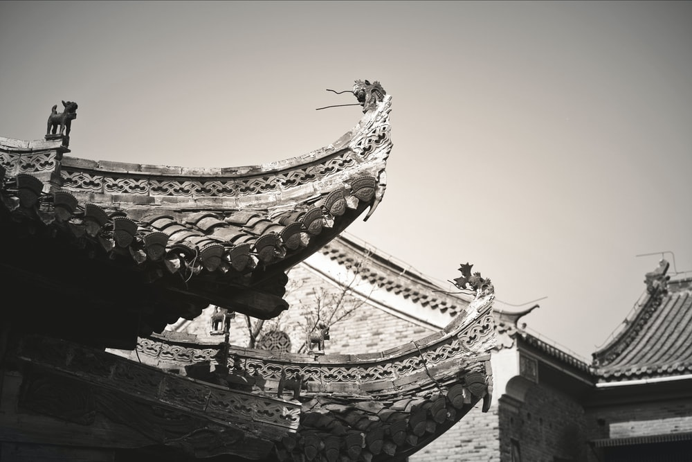 black and white bird flying over the temple