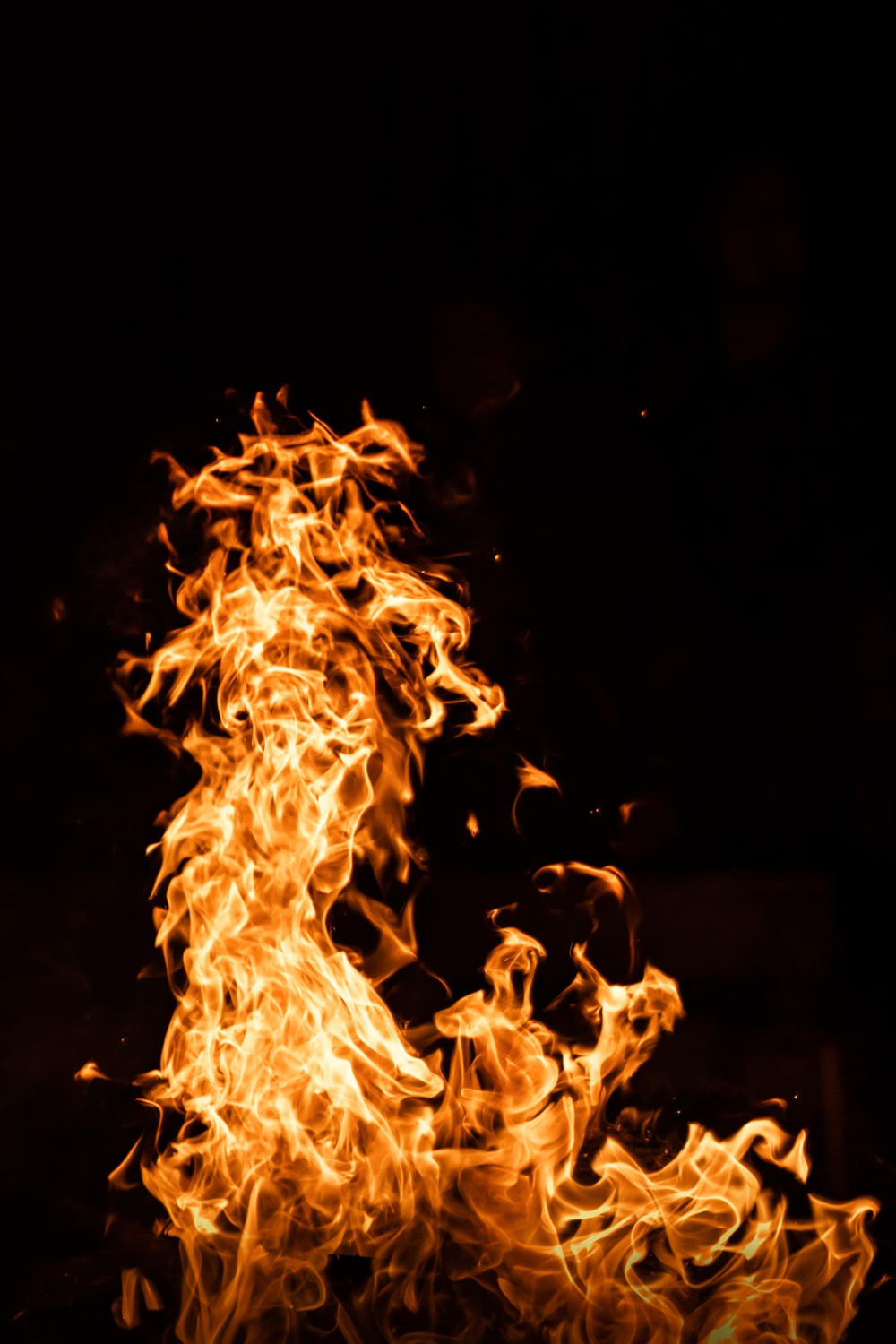fire in the dark during night time