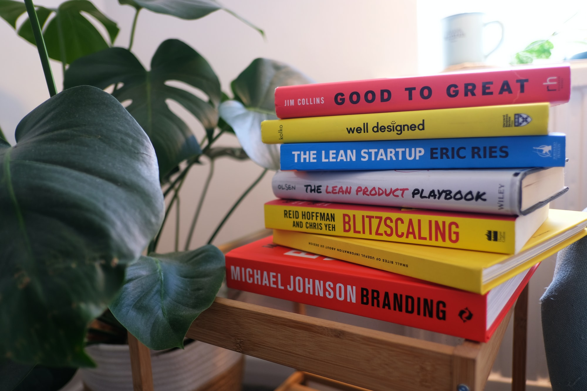 Collection of product management and design books with gorgeous monstera plant.