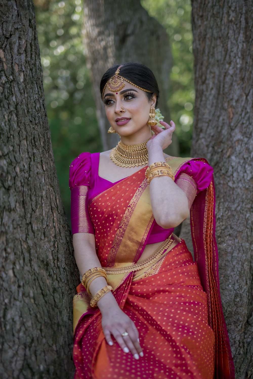 woman in red and blue sari dress