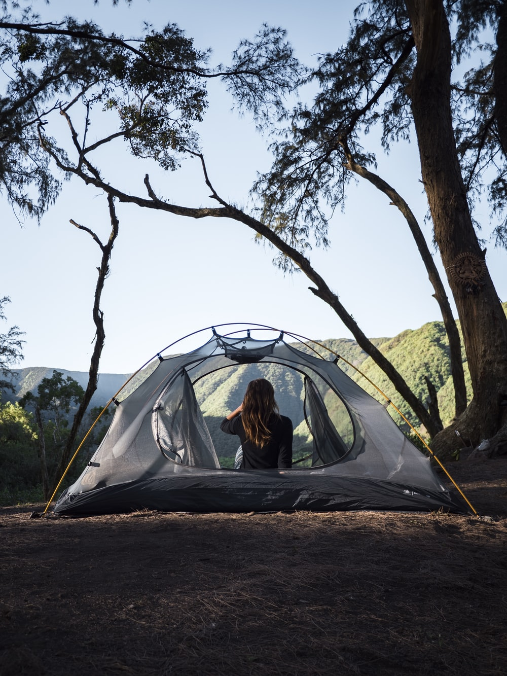 person in tent under tree during daytime