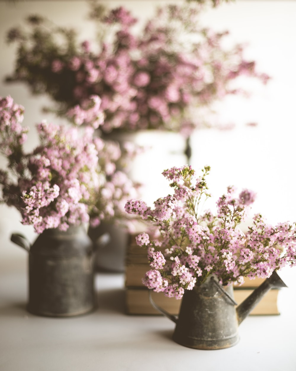 pink and white flowers in gray ceramic vase