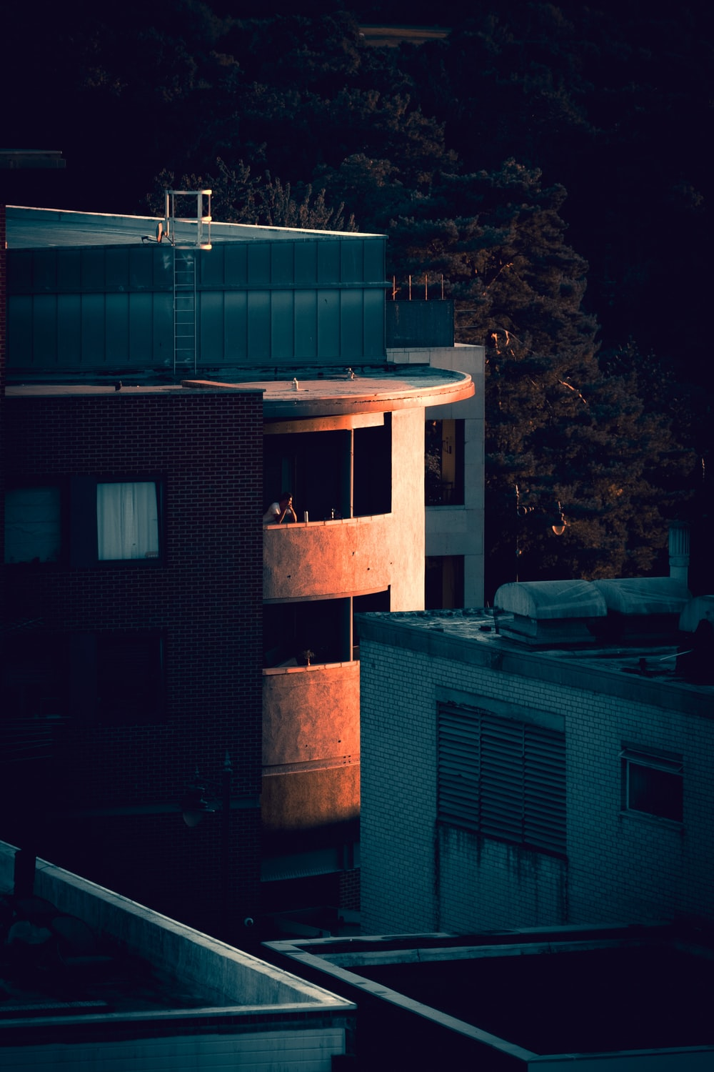 brown and white concrete building during night time