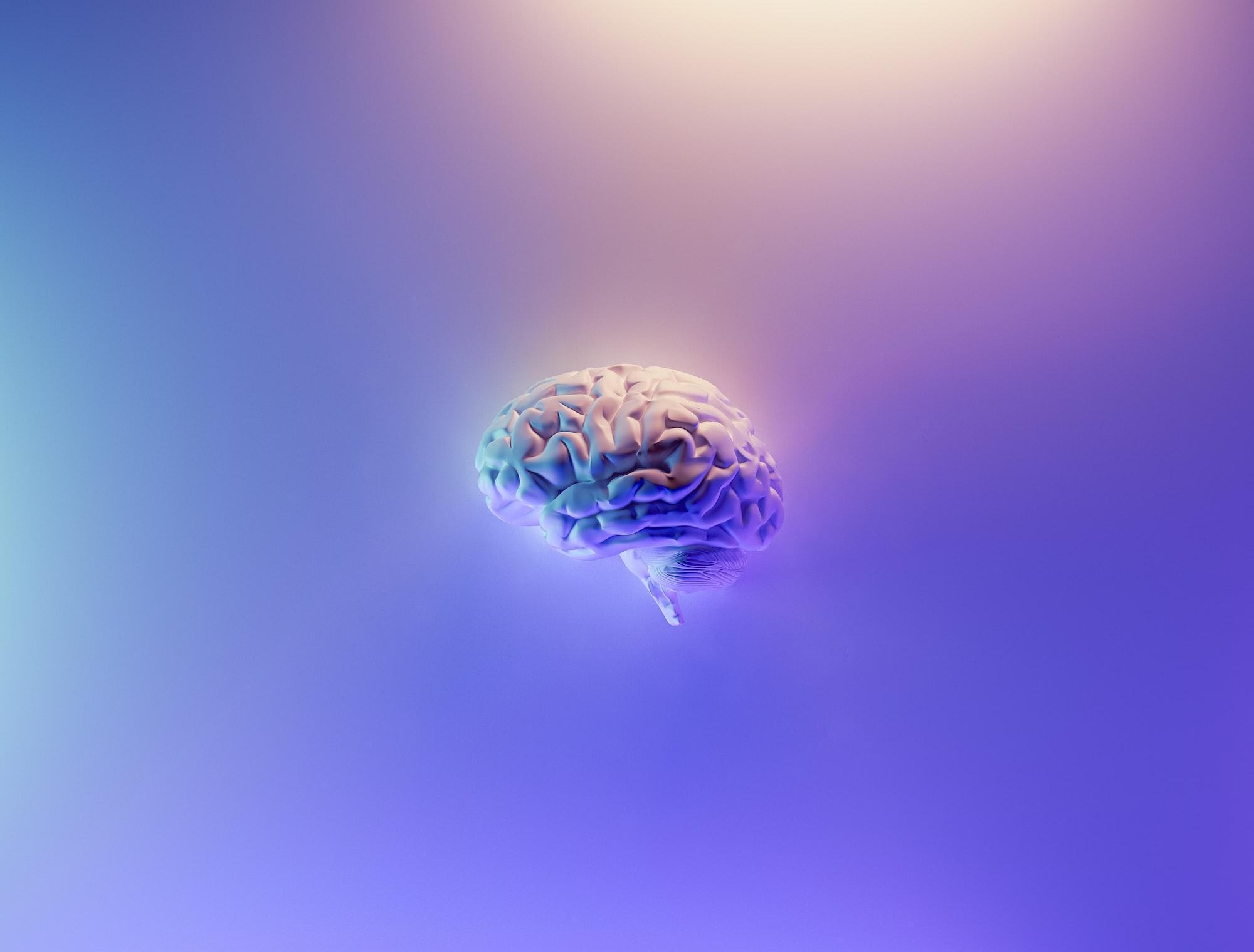 Will Elon Musk's Neuralink brain chip turn you into a stupid robot?