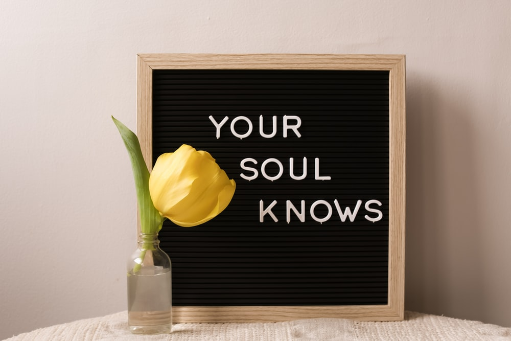 ego versus intuition, your soul knows, inner wisdom
