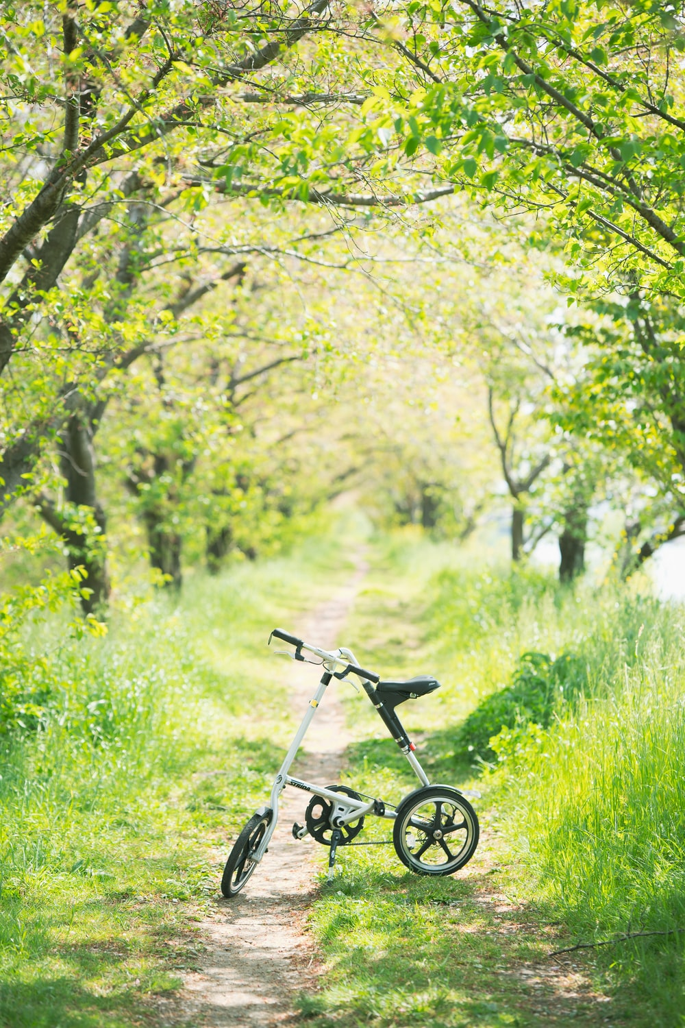 black bicycle on green grass field during daytime