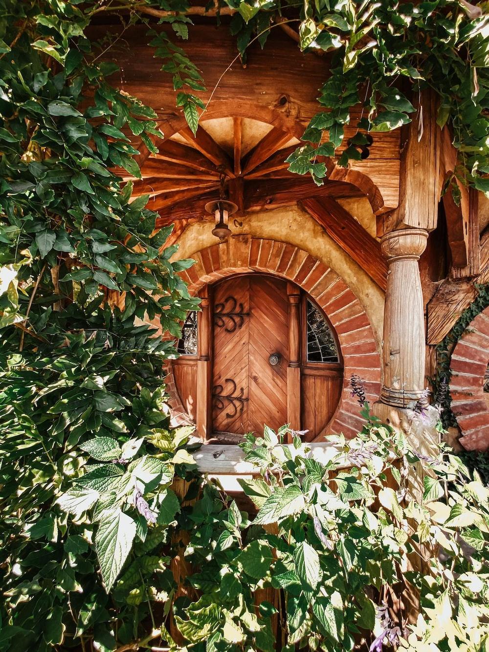 brown wooden door in brown and green leaves