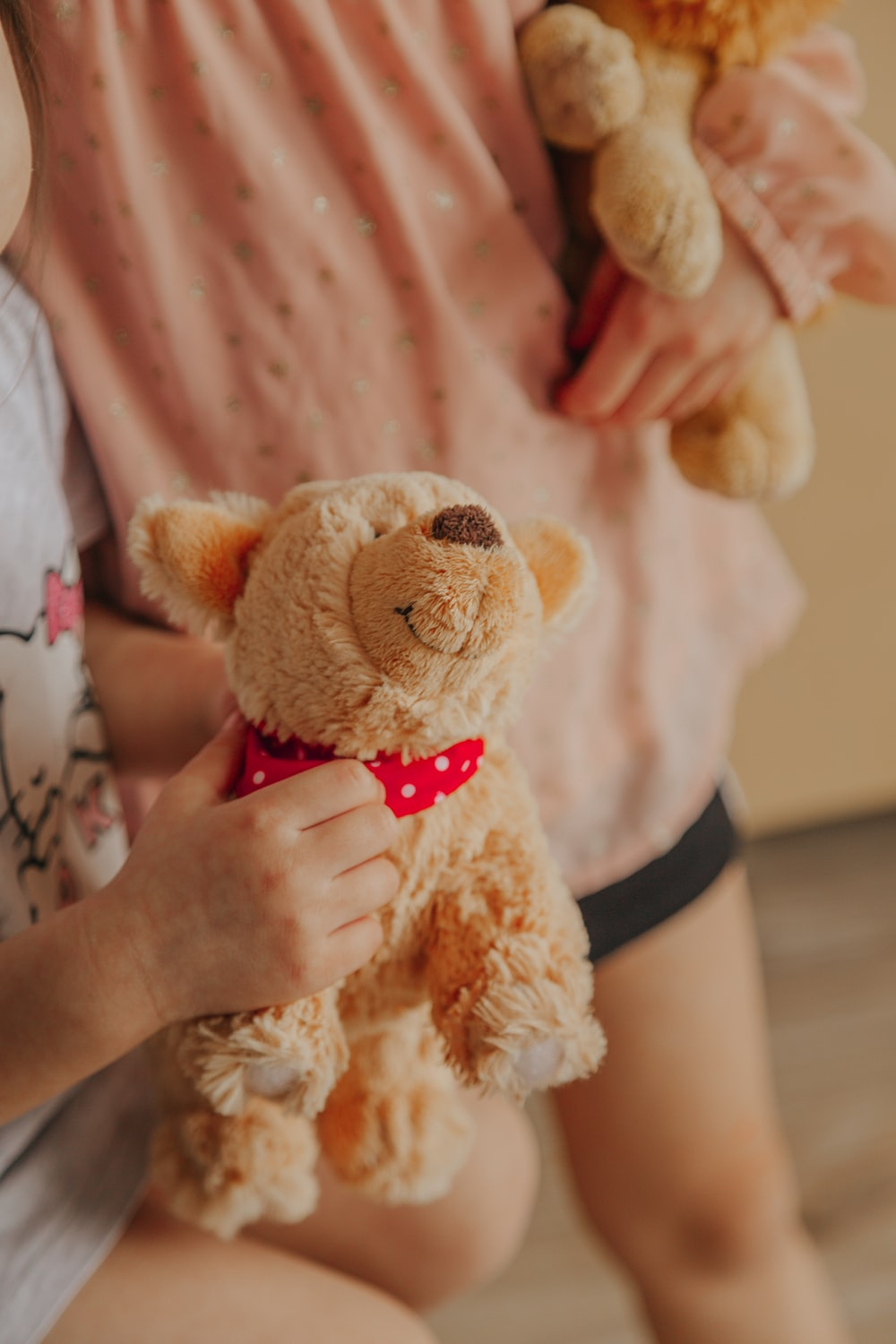 brown bear plush toy on persons hand