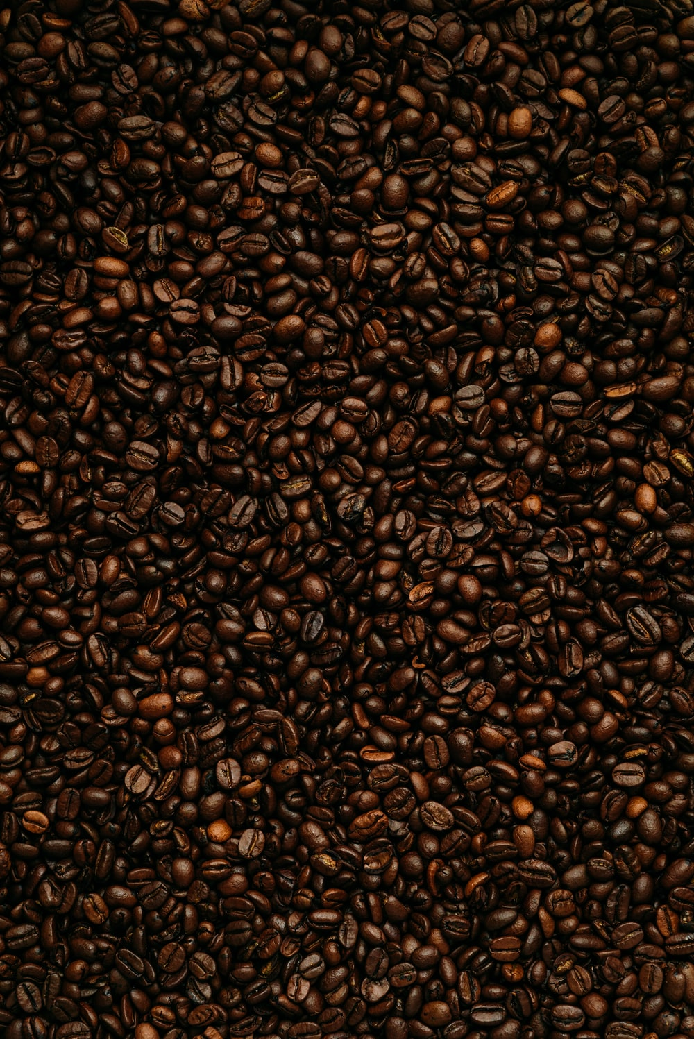 brown and black leopard pattern textile